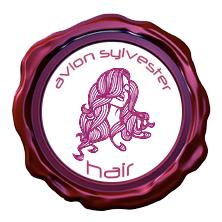 Logo Avion Sylvester